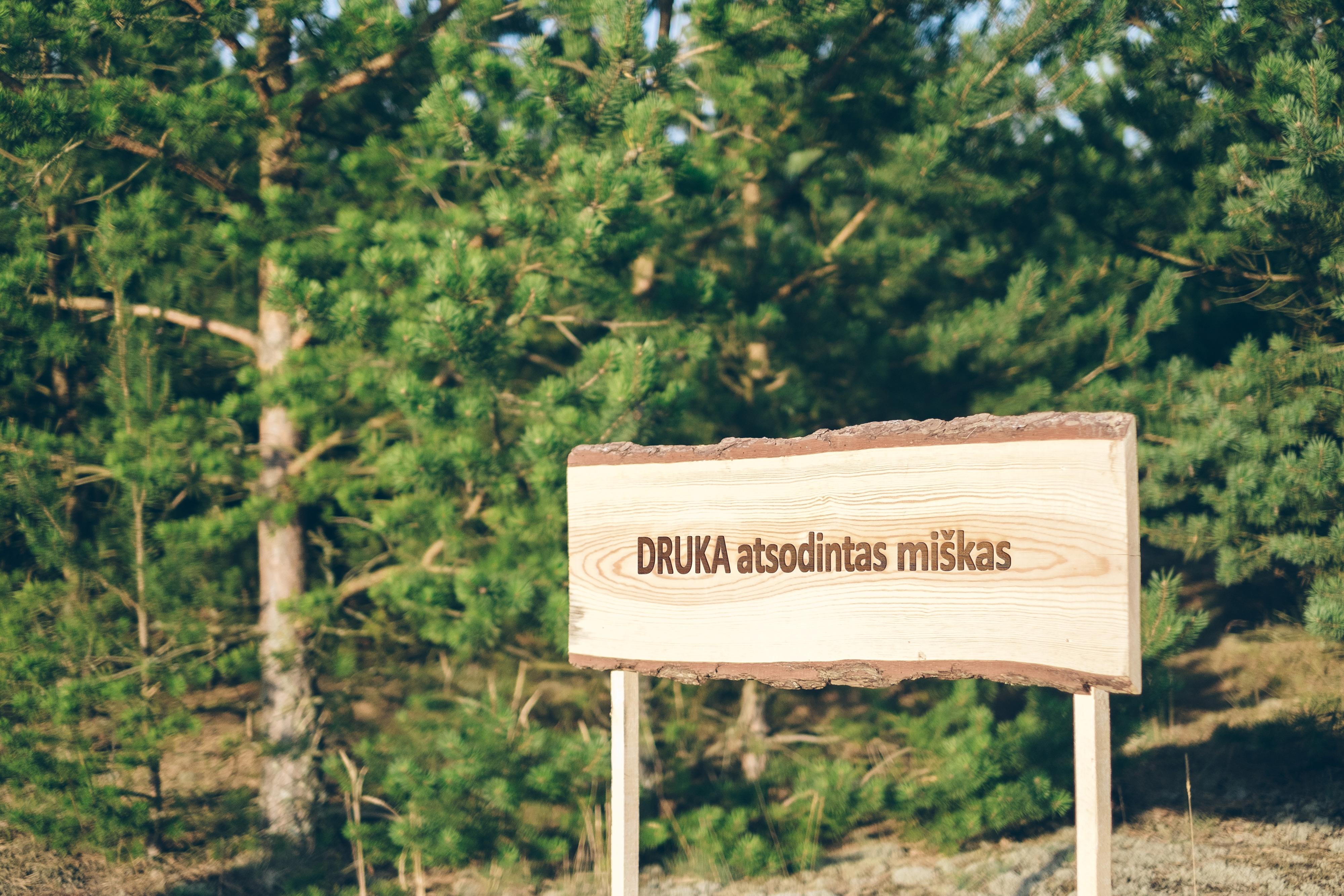 Druka-miškas